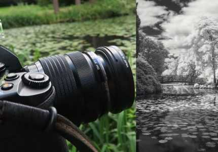 How to Take Infrared Photos with a Digital Camera